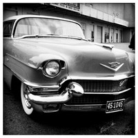 The Caddy BW