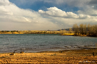 Chatfield Shoreline-05877