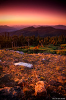 Sunrise Over The Bristlecone Forest