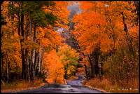 Autumn Country Roads