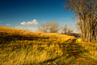 Path To The Country-05947