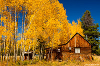 Cabin And Aspens