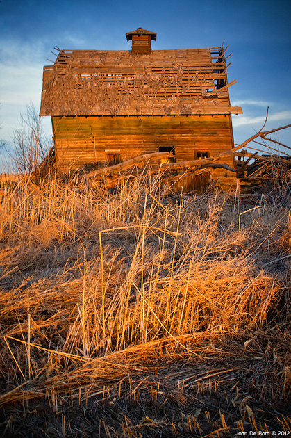 """""""Leaning In The Light"""" - Captured on the eastern plains of Colorado at dusk"""