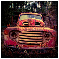 Old Ford-05833-pola