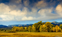 The Autumn Cottonwood Landscape