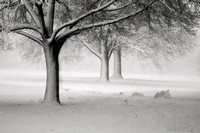 A Winter Atmosphere Sepia